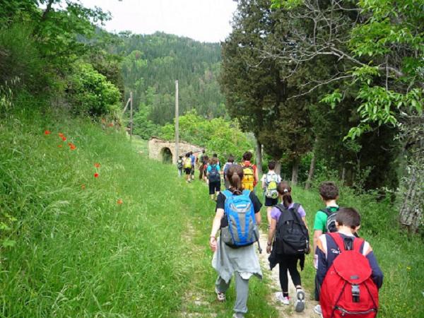 trekking__5_.png